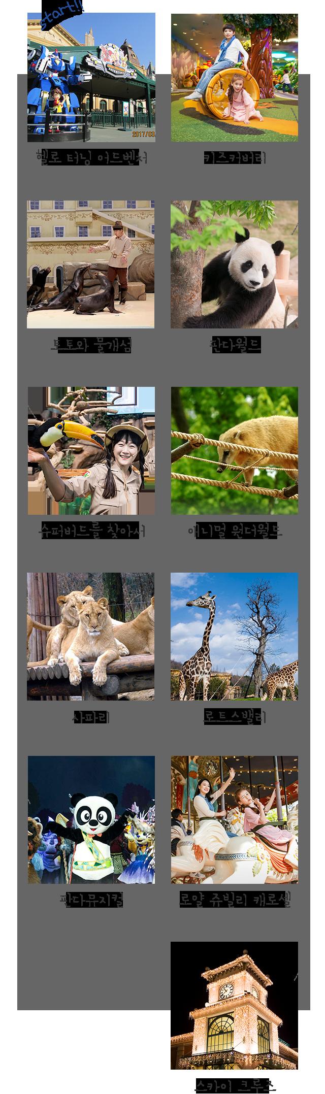 공연과 동물 이미지
