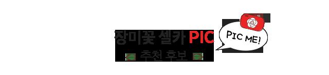 장미꽃 셀카 Pic 추천 후보