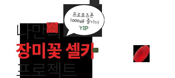 나만의 장미꽃 셀카 프로젝트