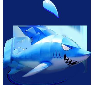 상어 이미지