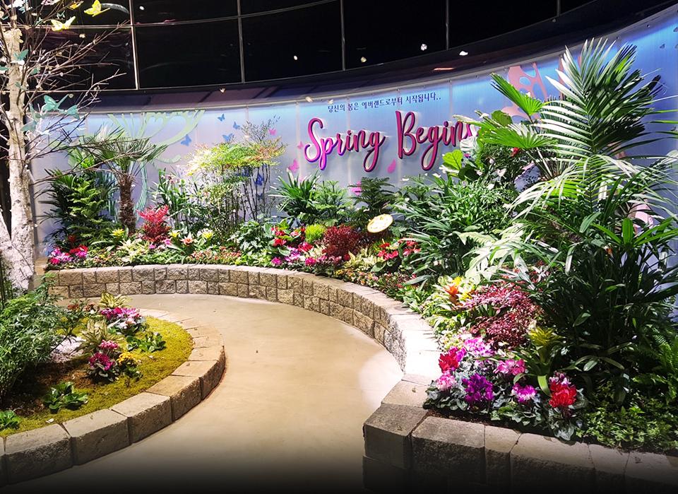 미리 봄 나비 정원 이미지