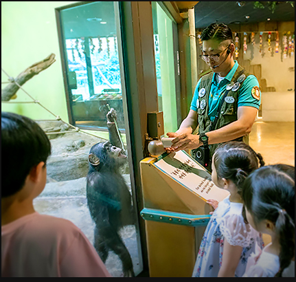 Cool Zoo Stamp Rally 이미지