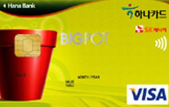 하나 단독 빅팟(BIGPOT)카드