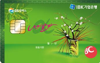 나의 알파(신용카드 TOP, 스카이패스, 아시아나)
